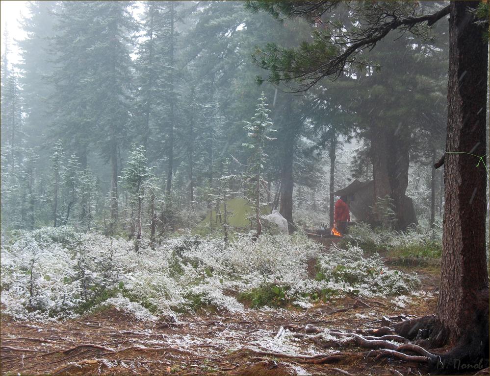 Так начался первый серьезный снегопад августа