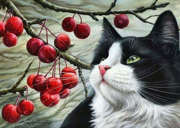 О чём мечтает кошка Ирина Гармашова
