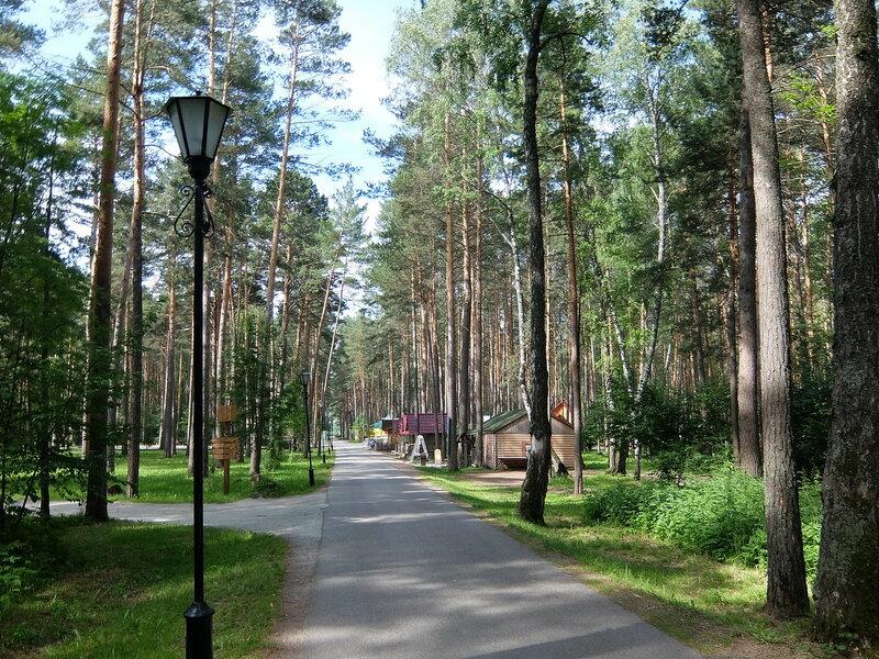 Томская писаница - Дороги и тропинки