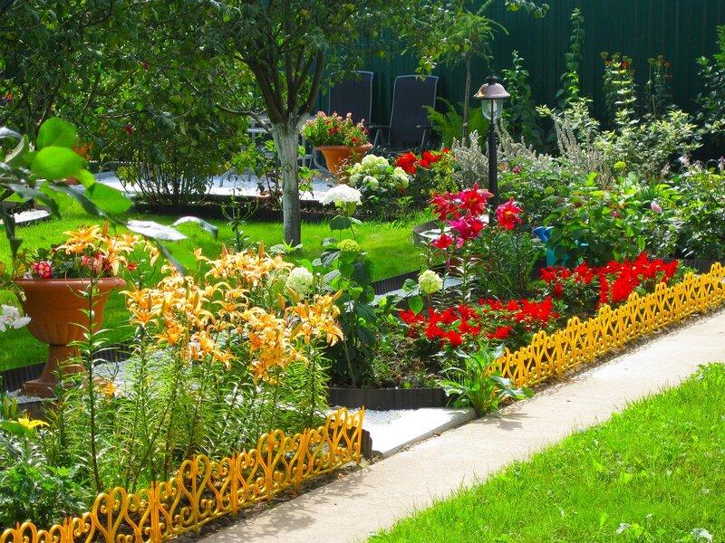 И многолетние цветы на даче