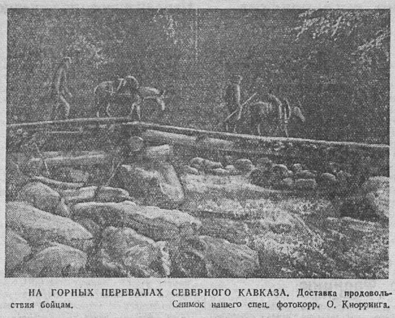 битва за Кавказ, «Красная звезда», 11 октября 1942 года