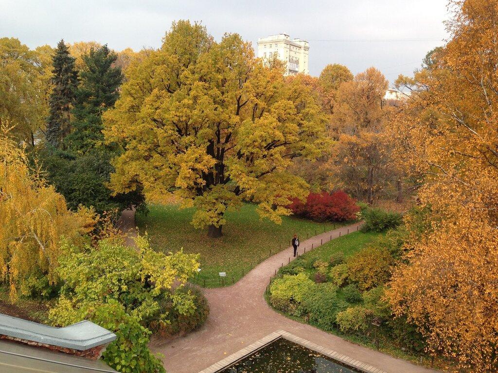 Несколько красивых дней в октябре