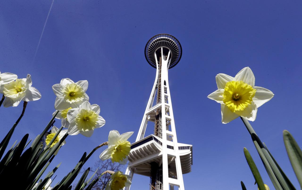 Spring, in focus.280.jpg