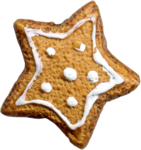 NLD Cookie (2).png