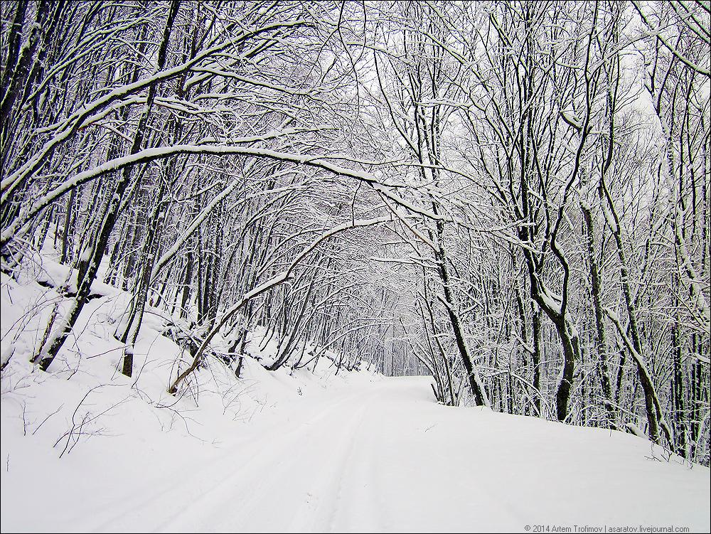http://img-fotki.yandex.ru/get/2712/225452242.39/0_1469ad_21455858_orig