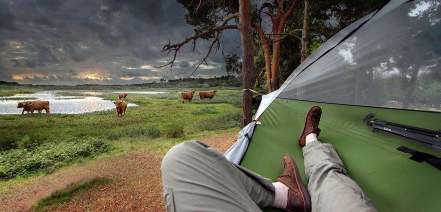 Палатка британского дизайнера позволит ночевать на дереве
