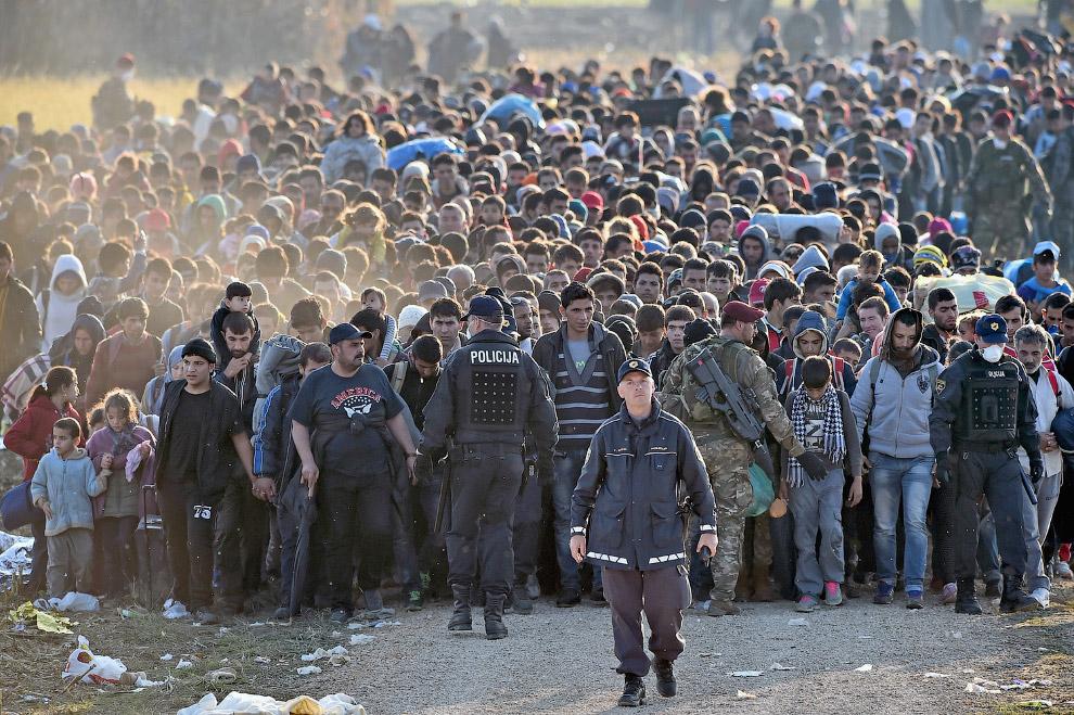15. На границе Сербии с Хорватией, 21 октября 2015. (Фото Marko Djurica | Reuters):