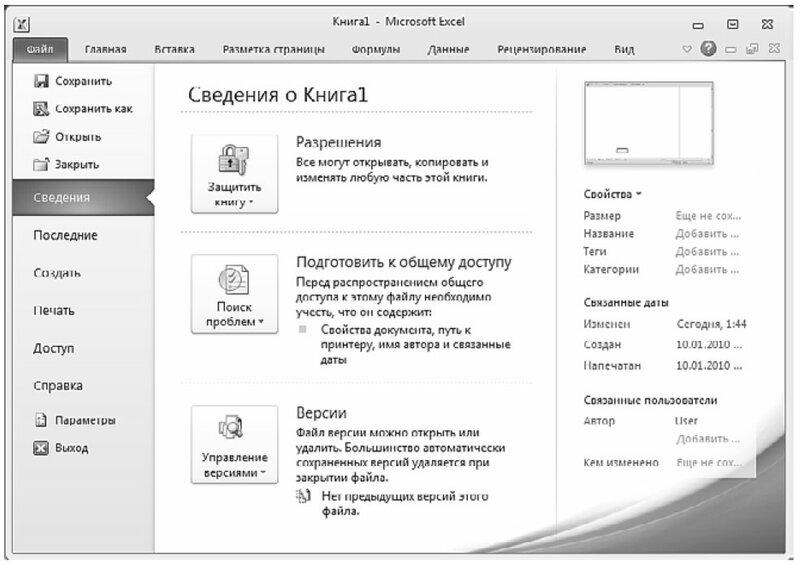 Вкладка Файл в книге Excel 2010