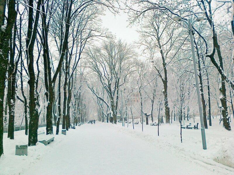 Дорога Владимирской горки зимой