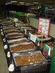 ЛИЛИИ от 49 руб.! Крупная луковица - низкие цены! Спешите в наши магазины!