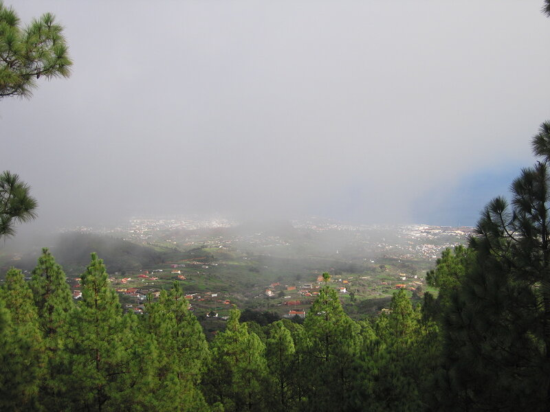 Тенерифе в тумане