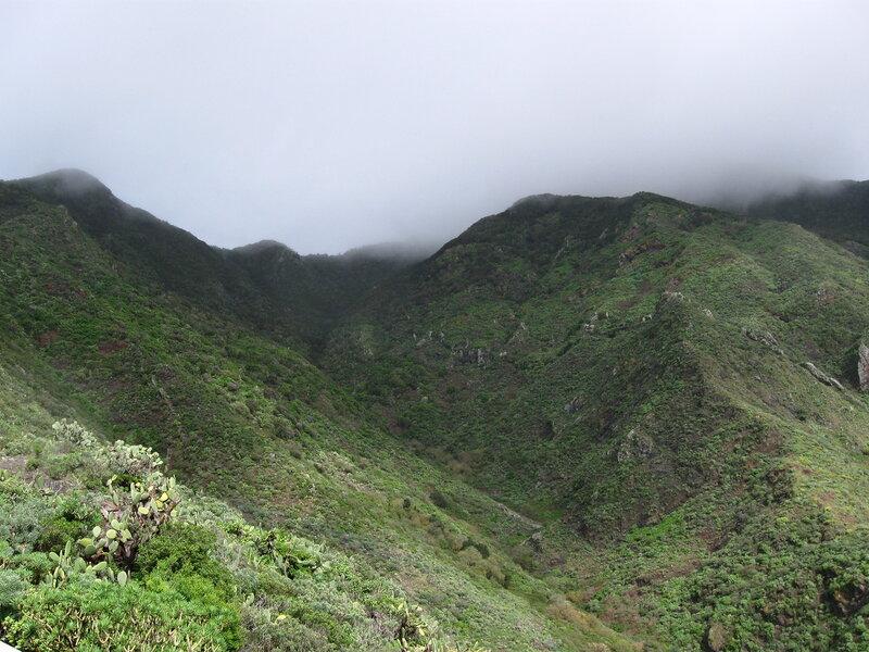 Горы Анага, Тенерифе