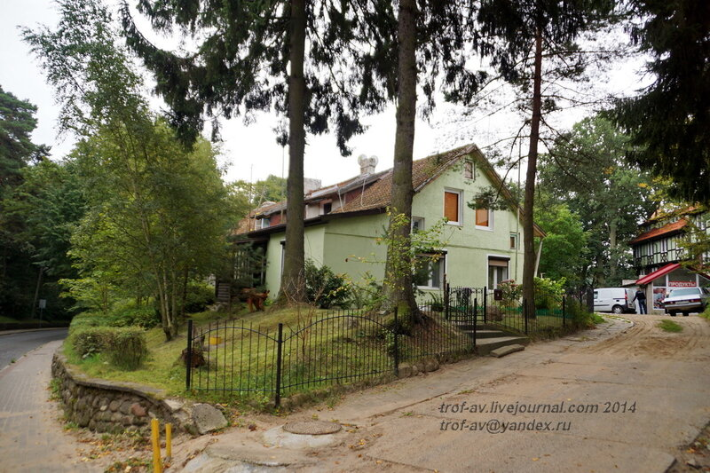 История и культура города - Светлогорске