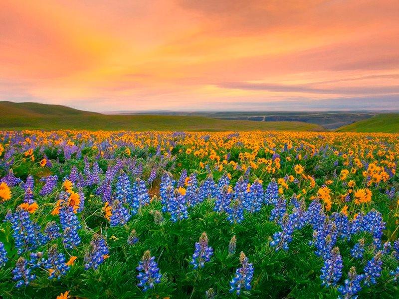 Самое красочные места Земли (12 фото)