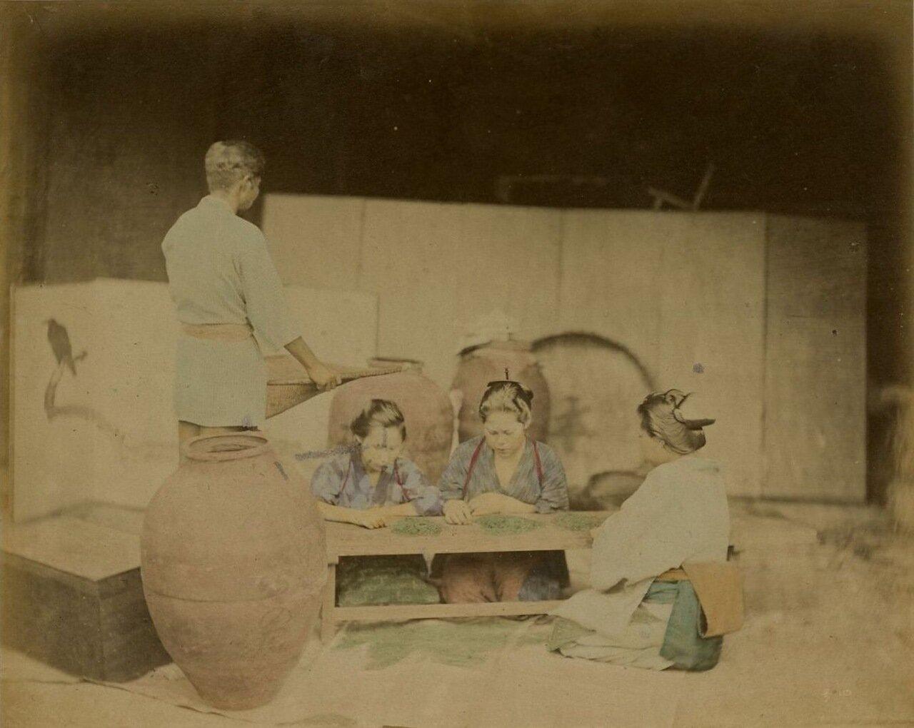 Девушки сортируют чай