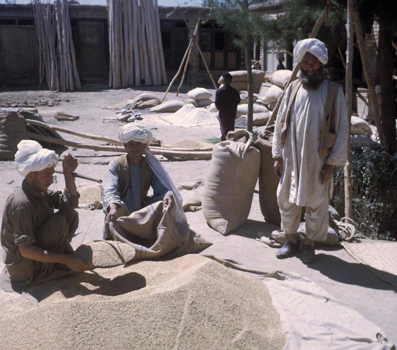 Торговцы зерном