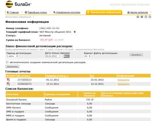 Beeline - Финансовая информация_2