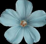 Sky_VG_Flower1.png