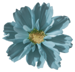 Sky_VG_Flower7.png
