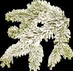 RR_Winter'sBeauty_Element (38).png