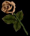 «p.s-iloveyou» 0_7d53b_741cb5bb_S