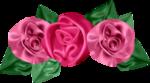 «pretty_in_pink» 0_7d5b6_220d72e_S