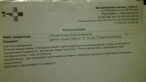 https://img-fotki.yandex.ru/get/2714/50951434.19/0_126b03_f6c7daac_L.jpg