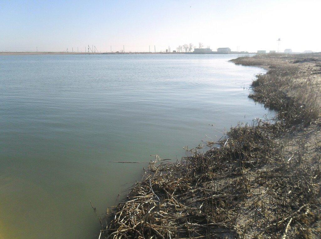 На берегу пролива ... SAM_4524.JPG