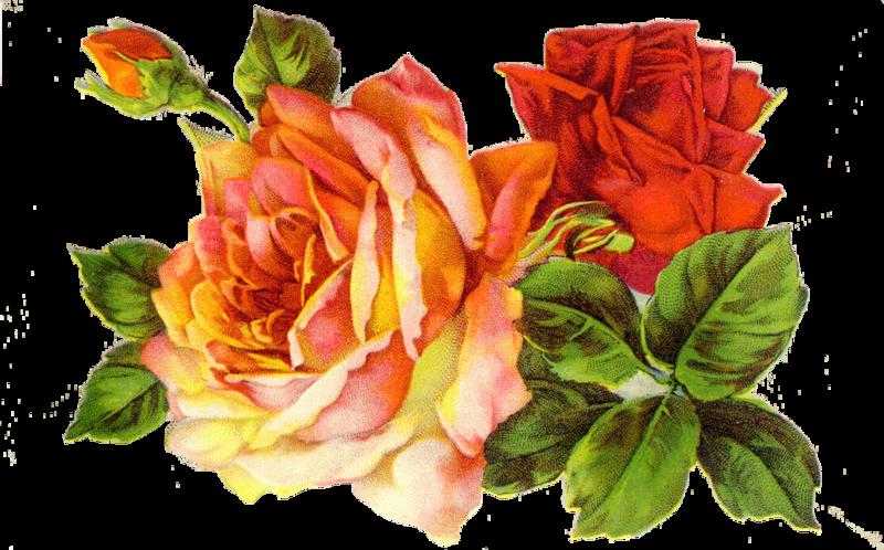 Ретро картинки цветов 7