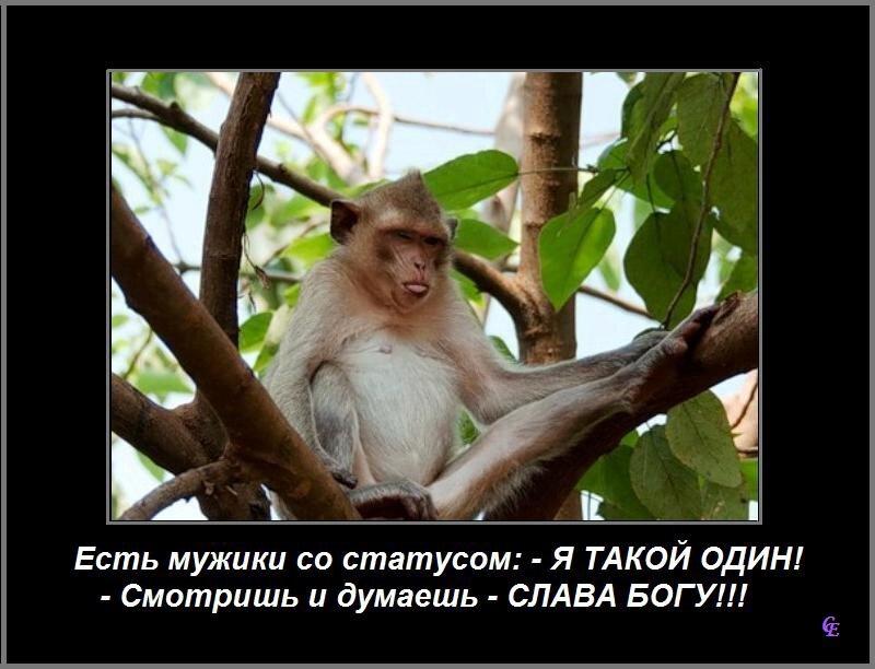 http://img-fotki.yandex.ru/get/2714/89348045.4/0_7c3e9_42a2621e_XL.jpg