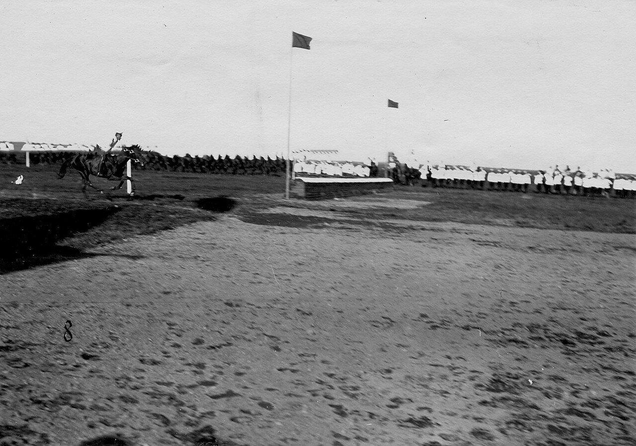 28. Участники конных состязаний на дистанции заезда перед взятием препятствия