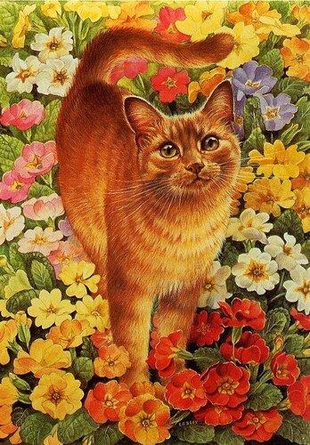Городской Цветок — «кототест.jpg» на Яндекс.Фотках