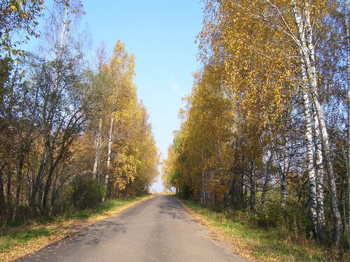 Дорога в осень**