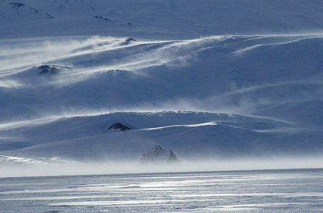 Подводный мир Антарктики