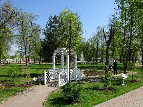 Городской парк, Тверь