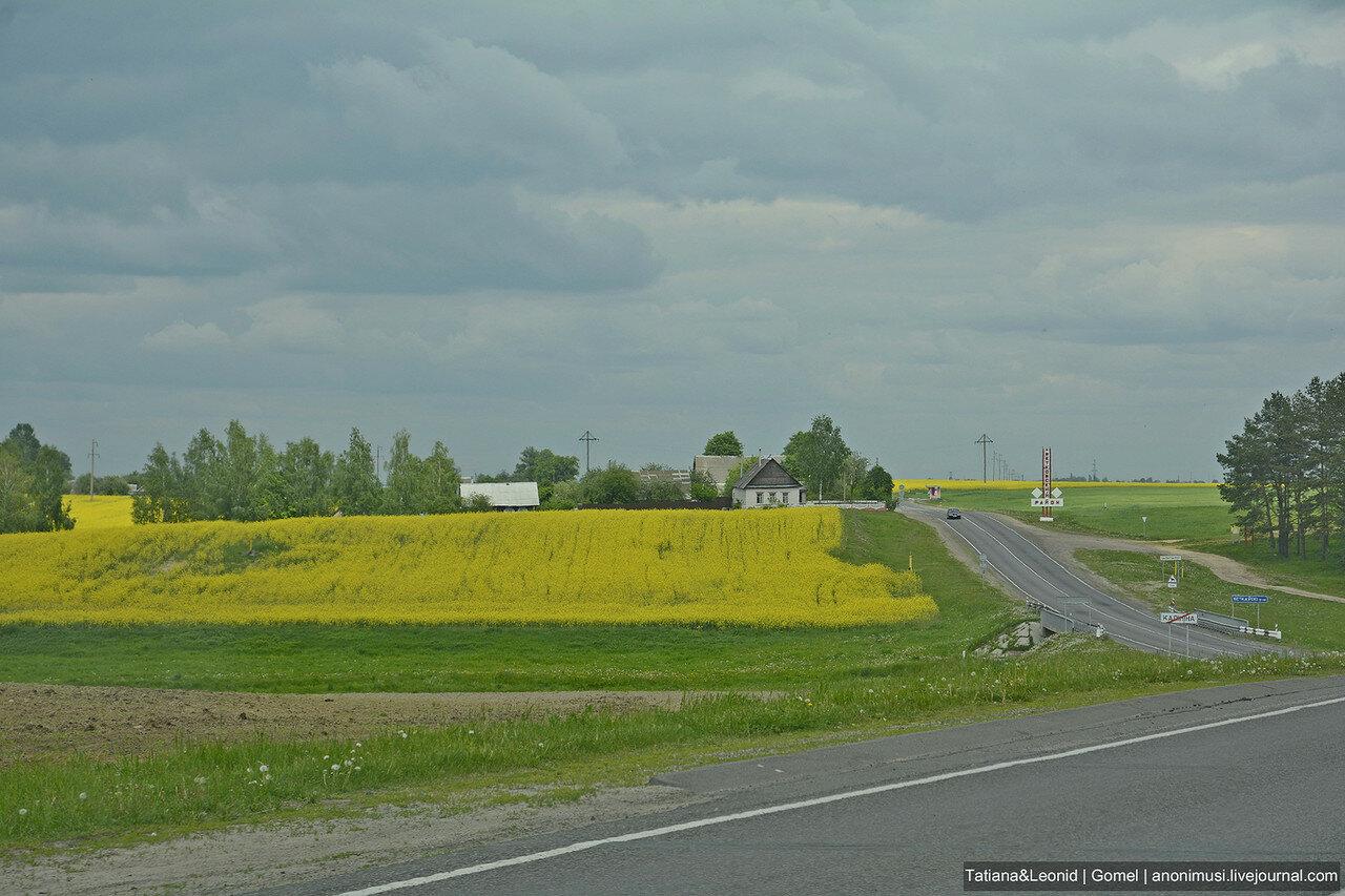 Гомельская область