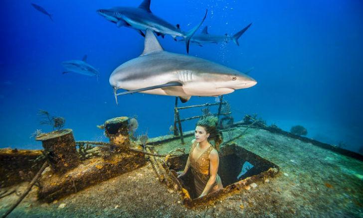 Бразильская модель окунулась в воду с акулами, чтобы защитить морских хищников (7 фото)