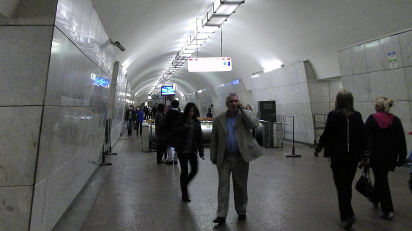 Нетрезвый пассажир упал под колеса поезда вмосковском метро