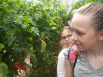 Посещение воспитанниками воскресной школы Казанского храма Раменское садоводческого научно-экспериментального центра Огородник