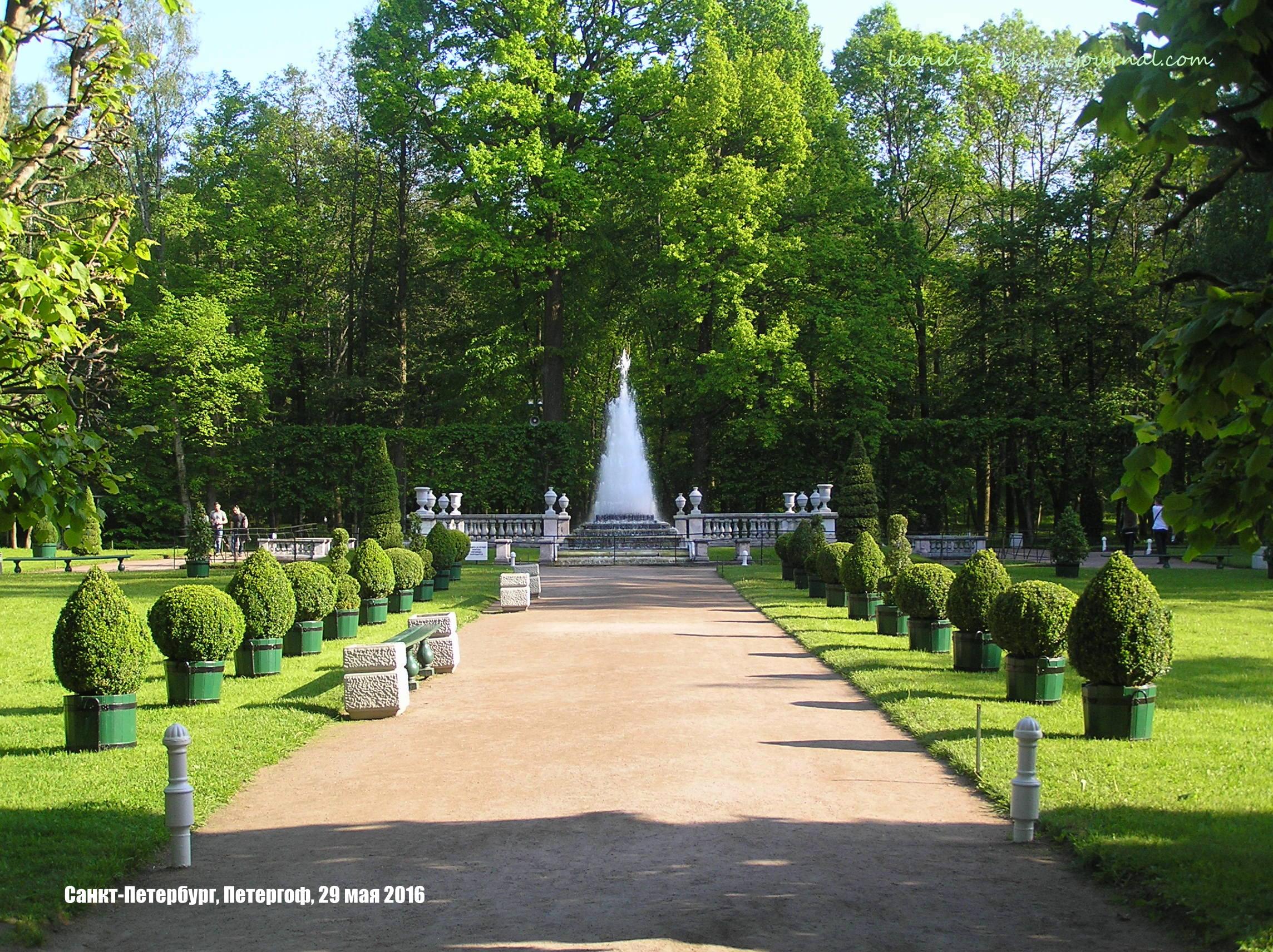 Peterhof Russia 159.JPG