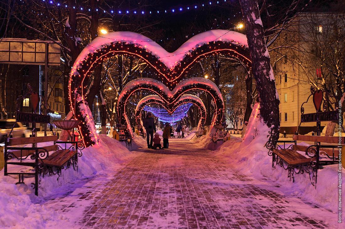 Московская область Химки аллея на улице Победы