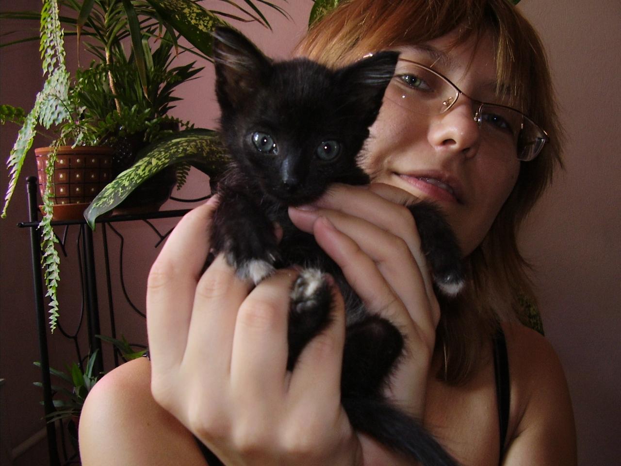 Maroosya котенок Цица