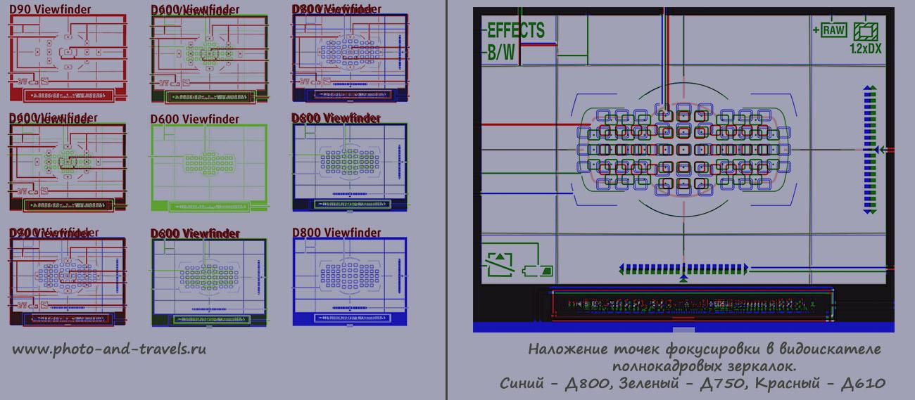 Сравнение расположения точек фокусировки в видоискателе зеркалок Nikon D610, Nikon D750 и Nikon D810.