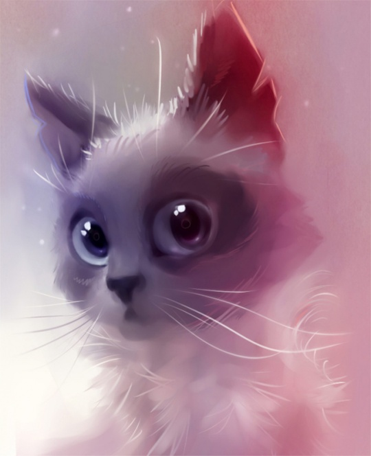 Cute Animal Artworks