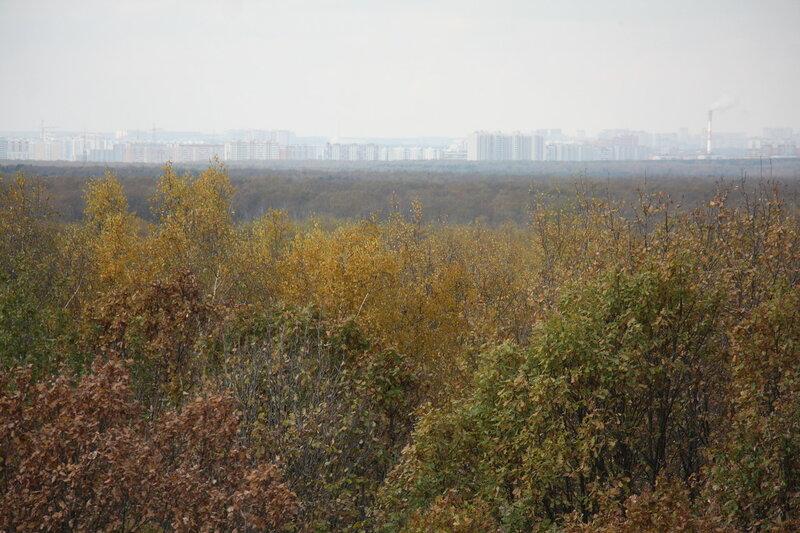 95. Осень в Москве, Теплостанский лесопарк.JPG