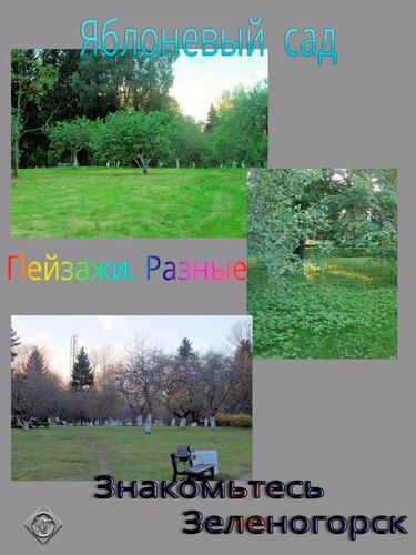 Яблоневый сад. Пейзажи,. Разные