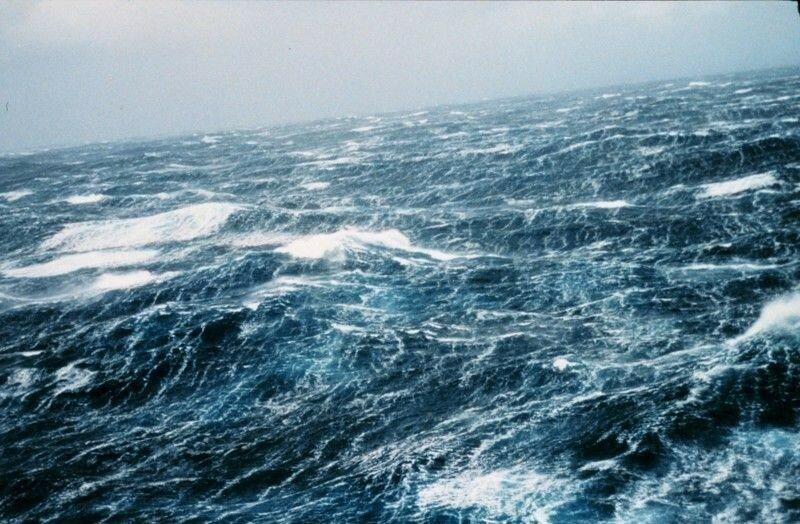 Советы «морского котика»: как выжить, если тебя пытаются утопить