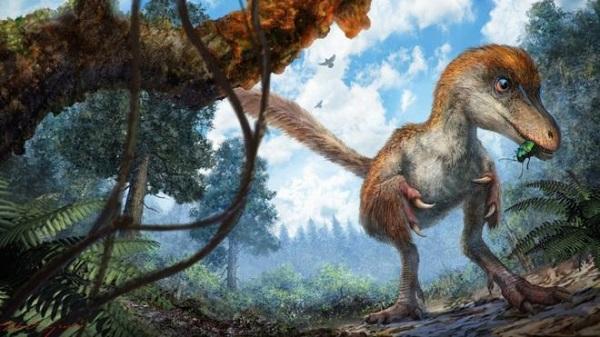 Следует отметить, что это впервые в истории ученым удалось найти мумифицированную часть скелета дино