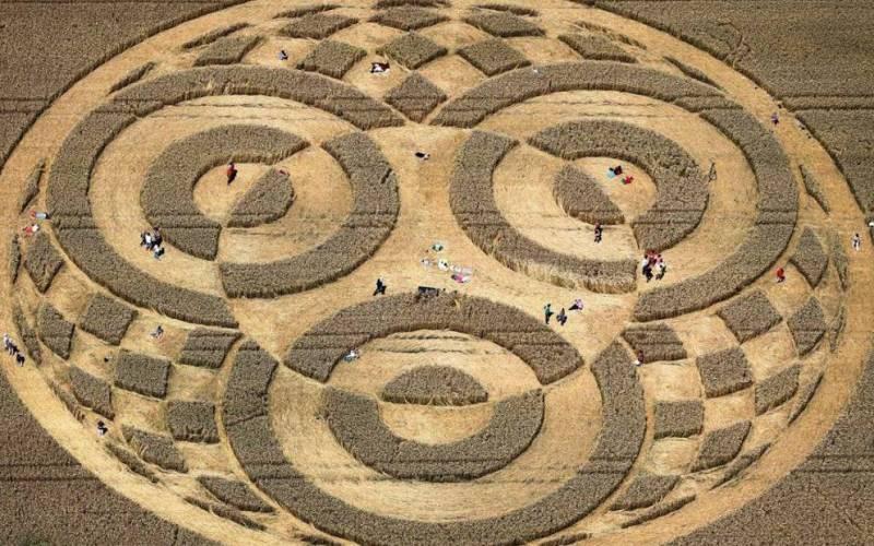 В местечке Райстинг на юге Германии круги были обнаружены на пшеничном поле воздухоплавателем, перес