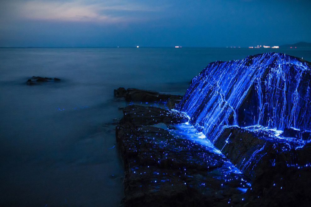 6. Волшебное свечение у берегов Японии, Окаяма.